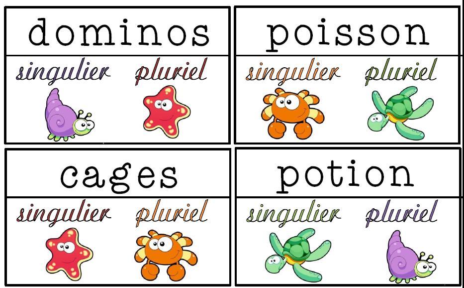 Singulier Ou Pluriel L Ecole De Crevette