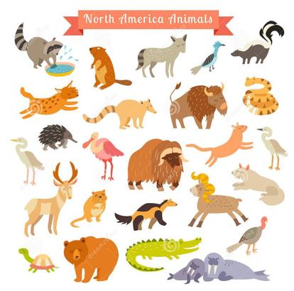 Documentaires sur les animaux d'Am du Nord