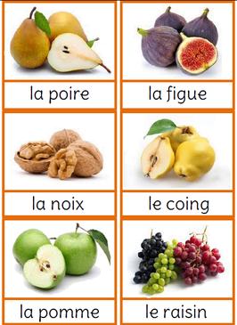 Les saisons carte nomenclature